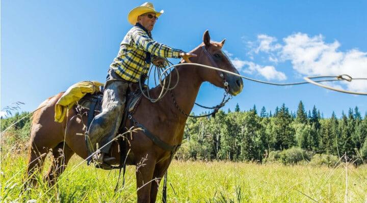 Vaqueiro: um profissional em extinção